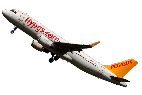 overbooking Pegasus Airlines