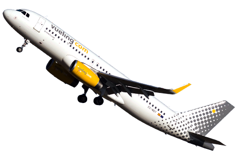 delay flight Vueling